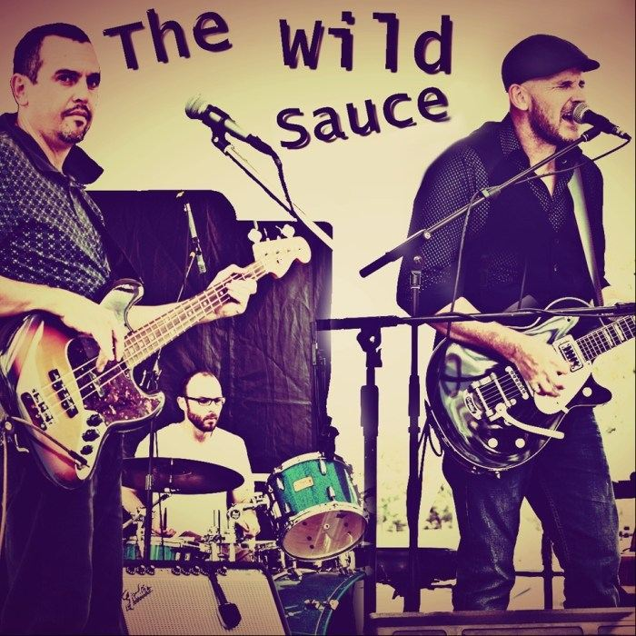 The Wild Sauce Performing Live