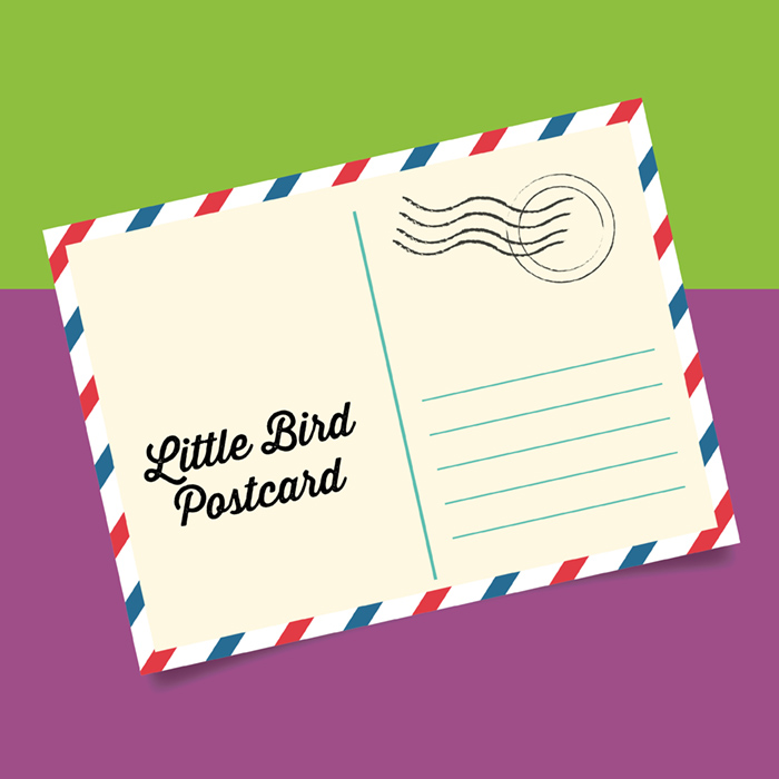 The Little Bird Postcard Project